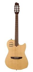 Godin MULTIAC STEEL DUET Natural HG